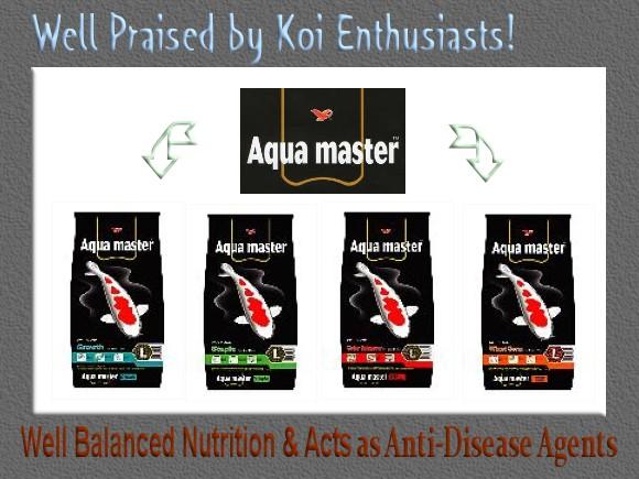 aqua_master_adL