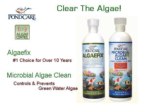 pondcare_algae_control_adl