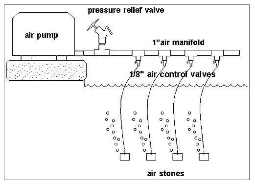 manifold_diagram