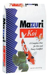 mazuri_koi_l.JPG